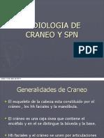 Craneo y Spn