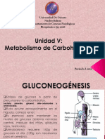 5-Unidad V. Metab Carbohidratos 2.pdf