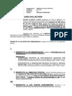 habeas data SUBSANA JUSTINO.docx
