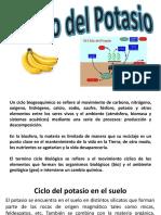 exponer_sabado_03-01-18