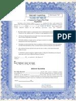 Tcus Trust Capital Units Blue Border Editable