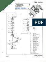 WYseries.pdf