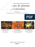 Libro rojo Bromeliaceas.pdf