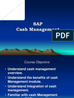 Sap Cash Management