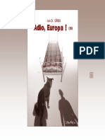 idsirbueuropa2.pdf