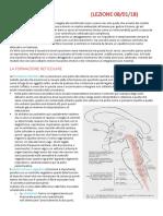Anatomia Lez21a