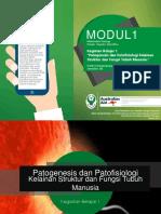 kb1patogenesis-150827101625-lva1-app6891