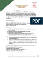 RG-EXP-12 CV Del Candidato