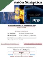 Transmisión Sináptica Med-2
