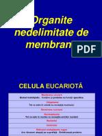 Organite Nedelimitate de Membrane