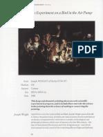 Experiment on a Bird.pdf