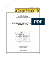 SD 22 Caracteres Estructurales ACOSTA (2)