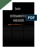 Entrenamiento en Habilidades -2014