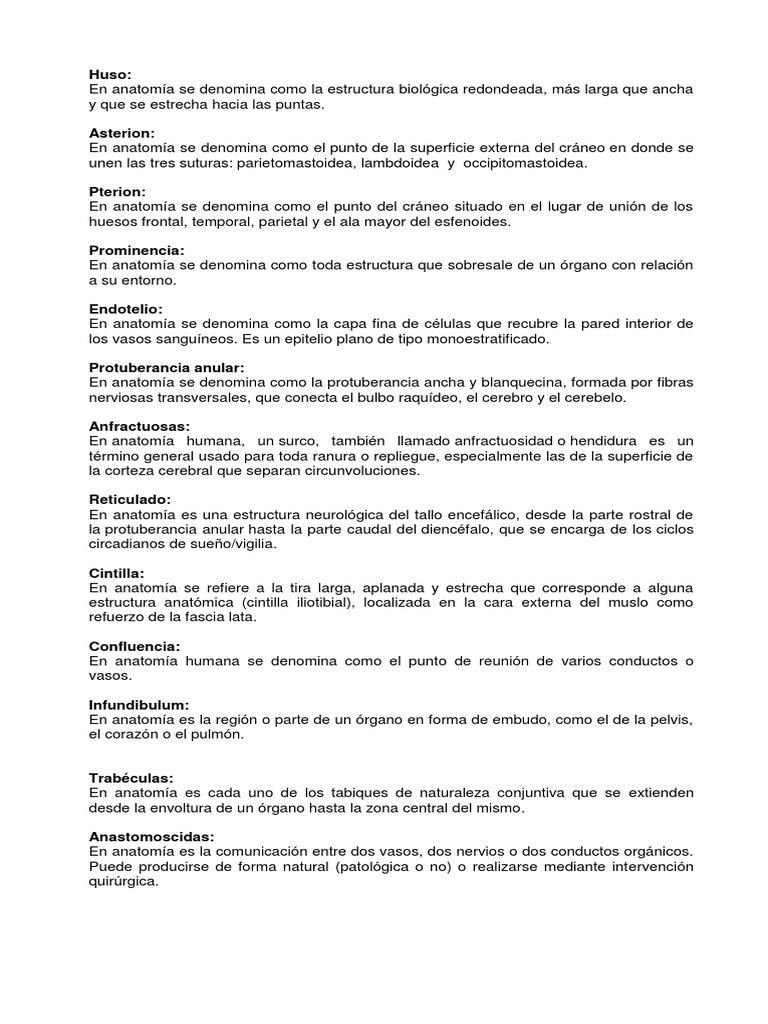 Increíble Anatomía De Una Ranura Patrón - Anatomía de Las ...