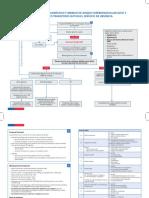 Anexo_1_ALGORITMO_ACV_MANEJO_URGENCIA_final.pdf