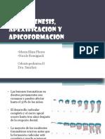 Apexogenesis Apexificacion y Apicoformac