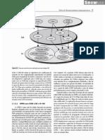 Comunicacoes Sem Fio - Principios e Praticas - Theodore S. Rappaport 2.Ed_Parte21