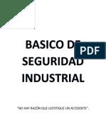 Basico de Seguridad Industrial (1)