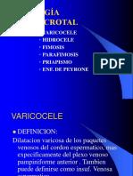 PATOLOGA+PENOESCROTAL