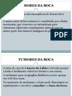 Tumores Da Boca 4