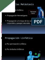 Edad y Predisposicion Genetica Corregido2