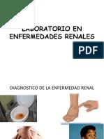 2.- Laboratorio en Enfermedades Renales