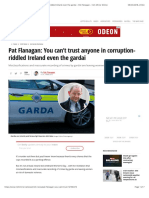 Pat Flanagan- You Can't Trust Anyone in Corruption-riddled Ireland Even the Gardai - Pat Flanagan - Irish Mirror Online