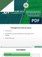 Composicion Quimica Dr Larrahondo