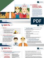 2.6_Sistema-de-Seguridad-y-Salud_Mineria (1).pdf