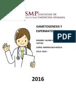 Gametogenesis y Espermatogenesis