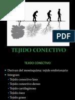 TEJIDO CONECTIVO 2015