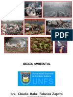 Crisis Ambiental1