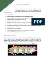 Clase 1 membrana plasmática