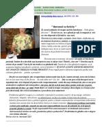 Articol Elena Uzea Babonea (1)