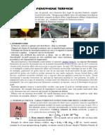 FENOMENE-TERMICE.pdf