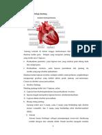 Anatomi Fisiologi Jantung Lp