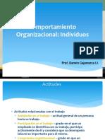 Comportamiento organizacional individual