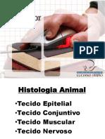 #Histologia Animal