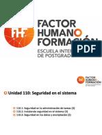 110 - Seguridad.pdf