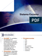 Sistema Excretor [BIOMARLLOS]