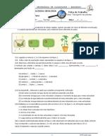 transporte-nas-plantas.pdf