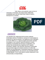 col y coliflor yessenia.docx