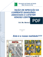 Bundle Infeccao Corrente Sanguinea