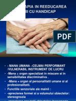 c4.Ergoterapia in Reeducarea Mainii Cu Handicap