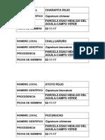 Rotulo de Semillero-APE