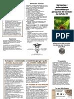 Tick Publication Spanish