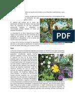 Flora y Fauna, Animales Vertebrados e Invertebrados Diego Vte