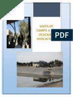 Visita de Campo a Ica