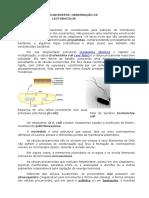 8.Observacao.de.Celulas.procarioticas.lactobacilos