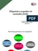 Anomalias Fetales (General)